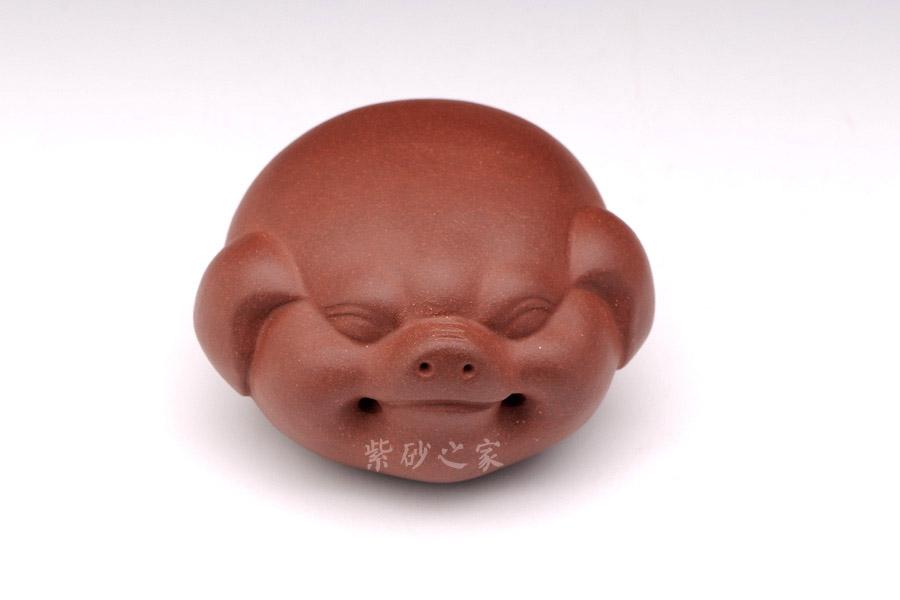▼小猪的表情细腻可爱