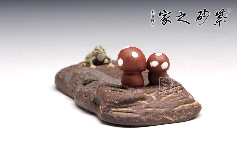 【 石头上的小蘑菇 】